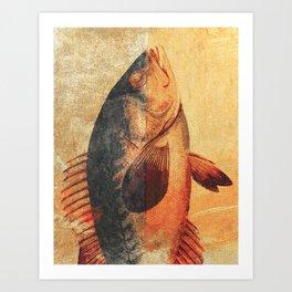 Piscibus 9 Art Print