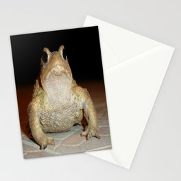 Common European Toad Stationery Cards