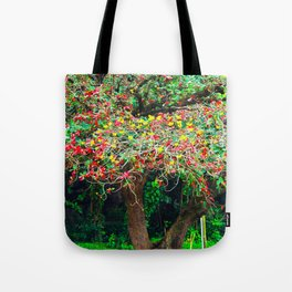 big tree with green yellow and red leaves Tote Bag
