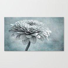 grey & blue Canvas Print