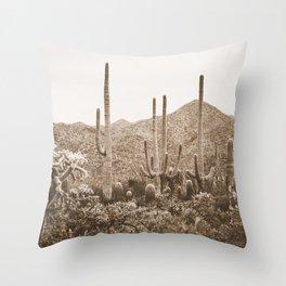 Bohemian Southwest Throw Pillow