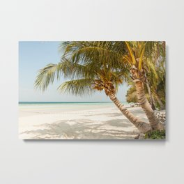 Palm Tree Paradise III Metal Print