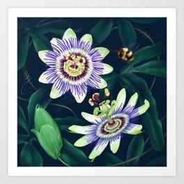 Passion Flower Vine Art Print