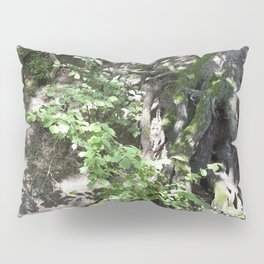 Roots and a tree 1 Pillow Sham