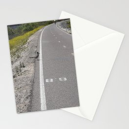 Roadrunner with a Lizard in the Pecker Stationery Cards