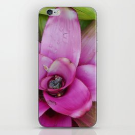 Purple Plant iPhone Skin