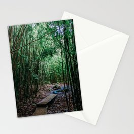 Bamboo Forest, Pipiwai Trail, Road to Hana, Maui, Hawaii Stationery Cards