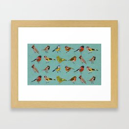 British Garden Birds - Blue Framed Art Print