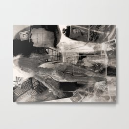 Dreaming of Flying: Arbor Hill Metal Print