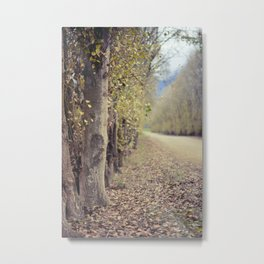 Autumn whisper Metal Print