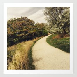 A Path in the Woods Art Print