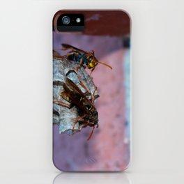 Paper Wasps Gaurding iPhone Case