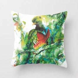 Quetzal Throw Pillow