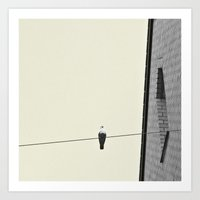 pigeon Art Prints featuring Pigeon by Steph Drömer