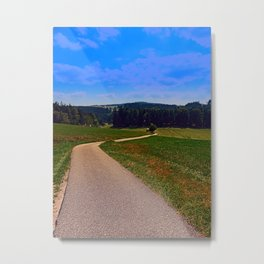 Yet another boring hiking trail picture | landscape photography Metal Print