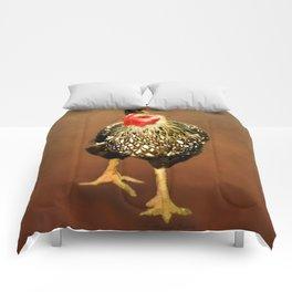 Ms Hen Comforters