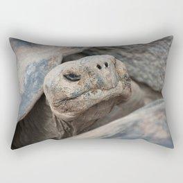 The ancient one Rectangular Pillow