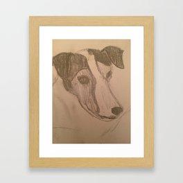 Jack Russel Study Framed Art Print