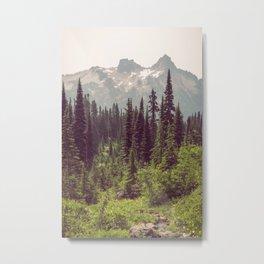 Faraway - Wilderness Nature Photography Metal Print