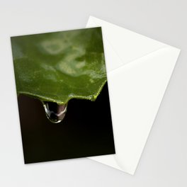 All The Raindrops Stationery Cards