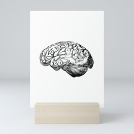 Brain Anatomy Mini Art Print