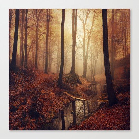 Forest Creek At Sunrise Canvas Print