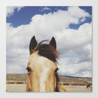horse Canvas Prints featuring Cloudy Horse Head by Kevin Russ