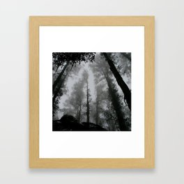 THROUGHT THE NATURE Framed Art Print