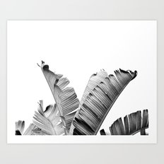 TROPICAL VIBE - black and white Art Print