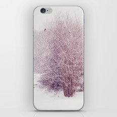 winter's snow iPhone & iPod Skin