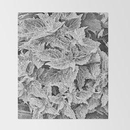 coleus black and white Throw Blanket