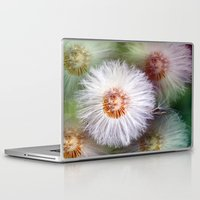 dandelion Laptop & iPad Skins featuring Dandelion by Laake-Photos