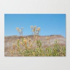 Little Flowers Canvas Print