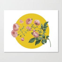 Sunny Roses Canvas Print
