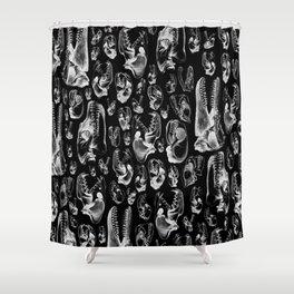 Carnivore B&W II Shower Curtain