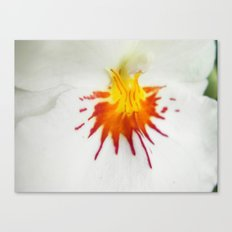 Painted Orchid Canvas Print
