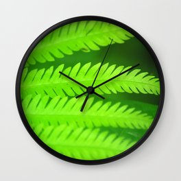 a green Fern Wall Clock