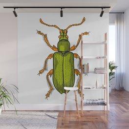 Shiny green beetle Wall Mural