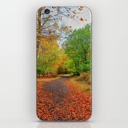 Autumn Dream iPhone Skin