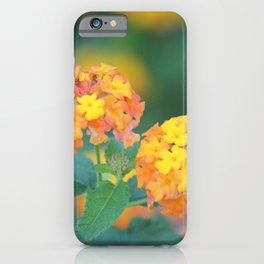 Pretty Sweet Floral Orange And Yellow Blossoms iPhone Case