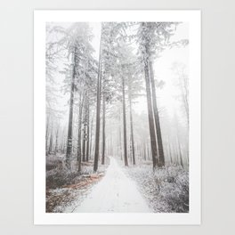 Mysterious road in a frozen foggy forest Art Print