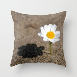 daisy in the sand Throw Pillow