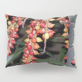 coffee plant (Bali, Indonesia) Pillow Sham