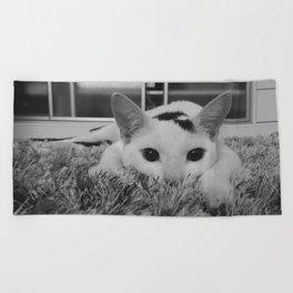kitty ready to pounce Beach Towel