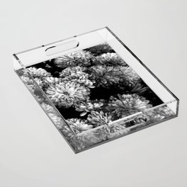 white gold  Acrylic Tray
