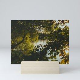 Over the River & Through the Trees Mini Art Print