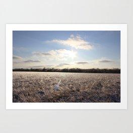 Icy Plain Art Print