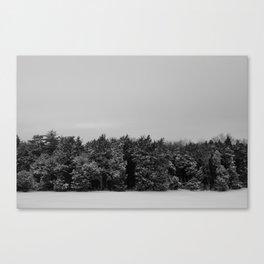 Snowy Sky 1 Canvas Print