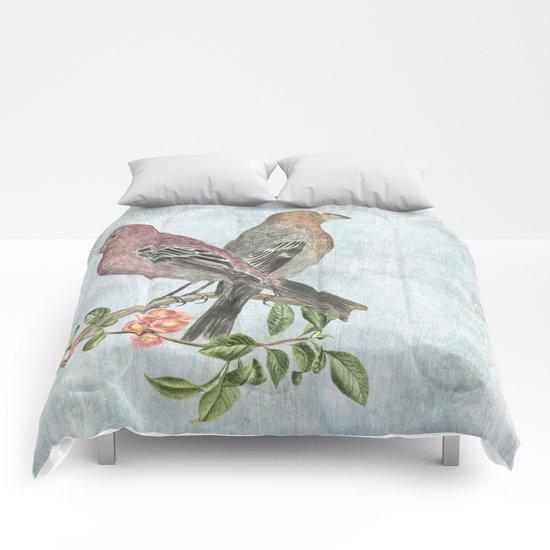 Spring watch Comforters