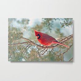 I Spy... (Northern Cardinal) Metal Print